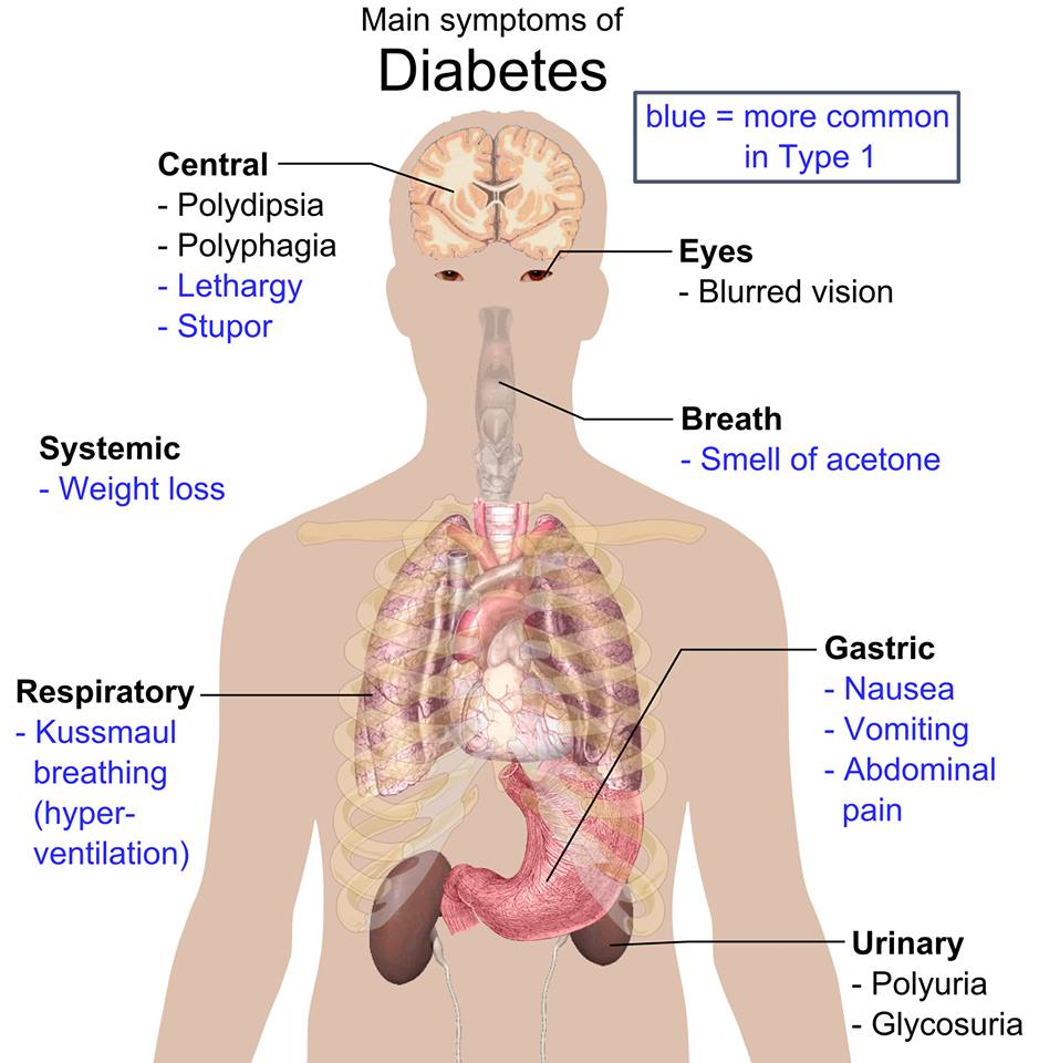 زندگی با دیابت